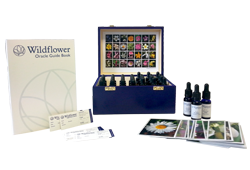 buy flower essences oracle online